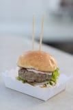 Étoffez le serverd de petit pain d'hamburger et de sauce et de sésame à mayonnaise sur la boîte de papier Images stock