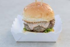 Étoffez le serverd de petit pain d'hamburger et de sauce et de sésame à mayonnaise sur la boîte de papier Images libres de droits