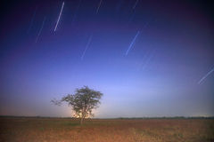 Étoile photographie stock libre de droits