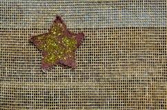 Étoile d'étincelle et de scintillement sur le fond de maille Photos stock