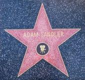 Étoile d'Adam Sandler Photo libre de droits
