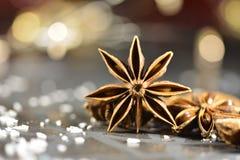 Étoile d'anis avec la noix de coco Image stock