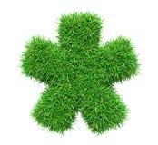 Étoile d'herbe verte Photo stock