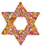 Étoile de David des fleurs Images libres de droits