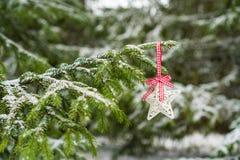 Étoile de Noël accrochant sur le sapin photos libres de droits