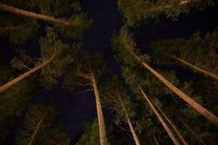 Étoile et lever de soleil de paysage à la montagne Photographie stock libre de droits