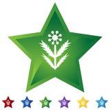Étoile réglée - Weed illustration de vecteur