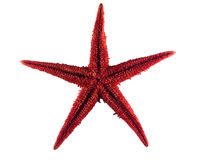 Étoile rouge Image libre de droits