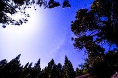 Étoiles dans le ciel la nuit Images libres de droits