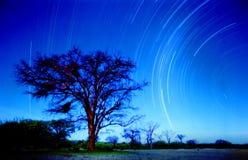 Étoiles dans le namib Photographie stock