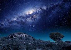 Étoiles de manière laiteuse en Afrique du Sud Photographie stock libre de droits
