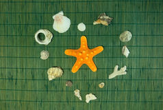Étoiles de mer au coeur de coquille sur le fond en bambou vert Photos stock