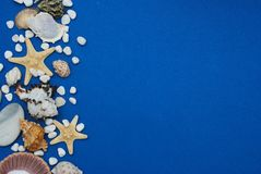 Étoiles de mer avec des coquilles et pierres sur un fond bleu avec l'espace de copie Été Holliday Nautique, concept de Marrine photo libre de droits