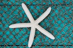 Étoiles de mer blanches sur le fond de texture de filet de poissons Images libres de droits