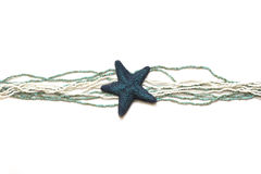 Étoiles de mer bleues sur un fond blanc Images libres de droits