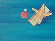 Étoiles de mer dans la chaise longue Photos libres de droits