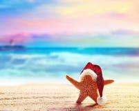 Étoiles de mer dans le chapeau de Santa au bord de la mer Images stock