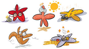 Étoiles de mer de bande dessinée Photos stock