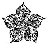 Étoiles de mer de mer illustration de vecteur