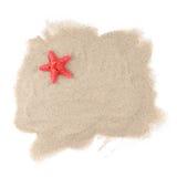 Étoiles de mer de mer sur le blanc Image stock
