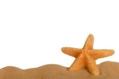 Étoiles de mer en sable Photos libres de droits