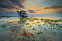 Étoiles de mer et bateau Image stock