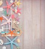 Étoiles de mer et bateau Photographie stock libre de droits