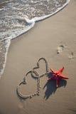 Étoiles de mer et coeurs Photos libres de droits