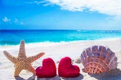 Étoiles de mer et coquillage avec des coeurs par l'océan Image stock