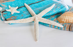 Étoiles de mer et coquille bleues de serviette sur le fond blanc Images stock