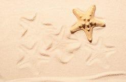 Étoiles de mer et marques des étoiles de mer sur le sable Photo stock