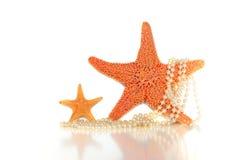 Étoiles de mer et perles Photographie stock libre de droits