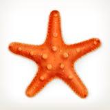 Étoiles de mer, icône de vecteur Image libre de droits