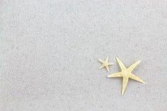 Étoiles de mer sur la plage, carte postale de vacances Images stock