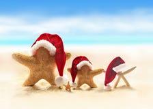 Étoiles de mer sur la plage d'été et le chapeau de Santa Image libre de droits