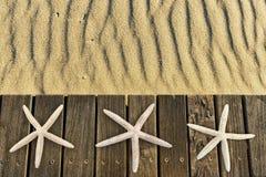 Étoiles de mer sur la plate-forme en bois avec le sable Images stock