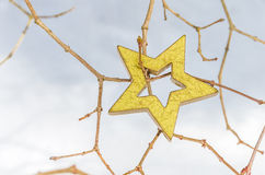 Étoiles de Noël dans la neige 4 Photographie stock libre de droits