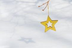 Étoiles de Noël dans la neige 5 Photo stock