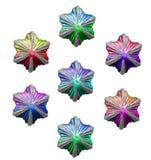 Étoiles de Noël de diverses couleurs Photos stock