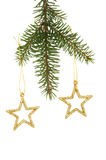 Étoiles de scintillement dans l'arbre de Noël Images libres de droits