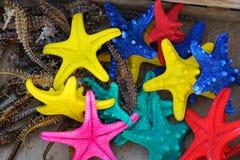 Étoiles et hippocampes attrapés en Crète images libres de droits