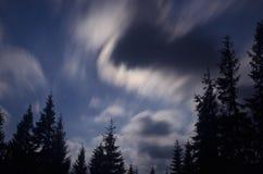 Étoiles et nuages au-dessus de forêt d'arbre de sapin Photographie stock libre de droits