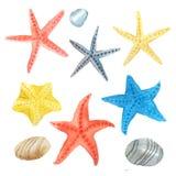 Étoiles et pierres de mer d'aquarelle réglées photographie stock libre de droits