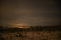Étoiles impeccables de neige de nuit de forêt Photos stock