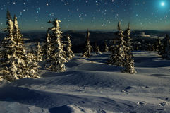 Étoiles impeccables de neige de nuit de montagnes Image libre de droits