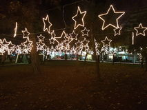 Étoiles menées de Noël aux arbres Photos stock