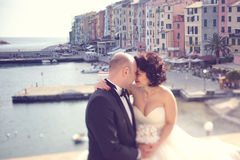 Étreindre de mariée et de marié Image stock