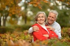 Étreindre supérieur heureux de couples Photos stock