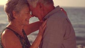 Étreindre supérieur mignon de couples clips vidéos