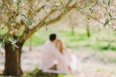 Étreinte de couples de mariage sous l'arbre Images stock